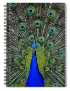 Eyes Have It Spiral Notebook