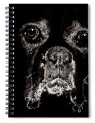 Eyes In The Dark Spiral Notebook