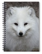 Eyes Of The Arctic Fox Spiral Notebook