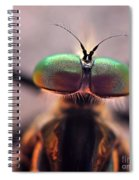 Eyes Of The Robber Fly Spiral Notebook