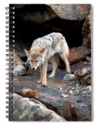 Eyes Of Warning Spiral Notebook