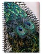 Eyes On My Back Spiral Notebook