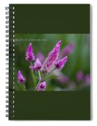 F2 Point 8 1 200th Sec Iso200 Spiral Notebook
