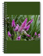 F32 1 Sixth Second Iso200 Spiral Notebook