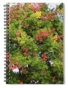 Fabulous Florida Fall Spiral Notebook