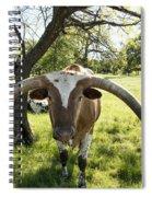 Fabulous Texas Longhorn Spiral Notebook
