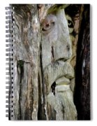 Face In The Forest Spiral Notebook