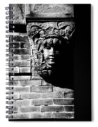 Face Of Stone Spiral Notebook