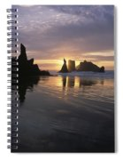 Face Rock Beach Bandon Oregon Spiral Notebook