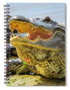 Face To Face Spiral Notebook