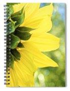 Facing The Sun Spiral Notebook