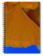 Fade To Autumn Spiral Notebook