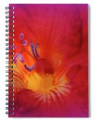Fade To Freesia - Iridaceae Spiral Notebook