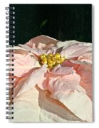 Faded Coral Spiral Notebook