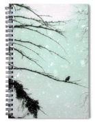 Abstract Faded Winter Spiral Notebook