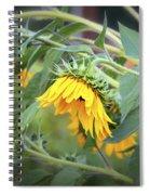 Fading Sunflower Spiral Notebook