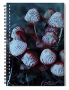Faerie Houses Spiral Notebook