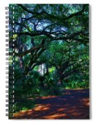 Fairy Path Spiral Notebook
