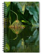 Fairy Pond Spiral Notebook