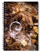 Fairy Ring Door Spiral Notebook