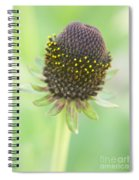 Fairy Ring Spiral Notebook