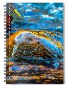 Fairy Tale Waters Spiral Notebook