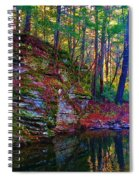 Fairyland Forest Spiral Notebook