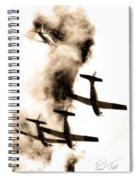 Falcon Art Spiral Notebook