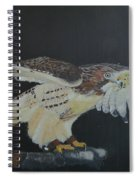 Falconry 5 Spiral Notebook