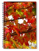 Fall 08-005 Spiral Notebook