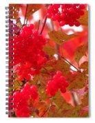 Fall 08-008 Spiral Notebook