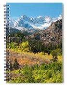 Fall Aspen Below The Sierra Crest Spiral Notebook