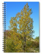 Fall At The Dunes Spiral Notebook