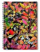 Fall Blueberry Bush Spiral Notebook