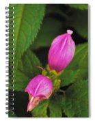 Fall Buds Spiral Notebook