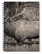 Fall Bugling Spiral Notebook