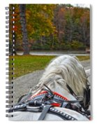 Fall Carriage Ride Spiral Notebook