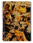 Fall Cleanup Spiral Notebook