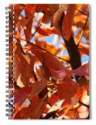 Fall Color 2 Spiral Notebook