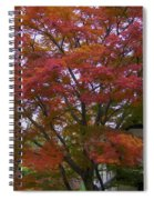 Fall Color Spiral Notebook
