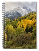 Fall Color In The Rockies Near Ouray Dsc07913 Spiral Notebook