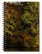 Fall Color Trees V7 Pano Spiral Notebook