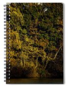 Fall Color Trees V8 Pano Spiral Notebook