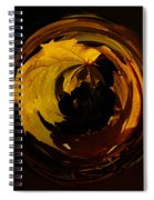 Fall Colorball Spiral Notebook
