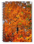 Fall Colors 2014 - 14 Spiral Notebook