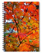 Fall Colors 2014-4 Spiral Notebook