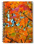 Fall Colors 2014-5 Spiral Notebook