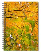 Fall Colors 2014-8 Spiral Notebook
