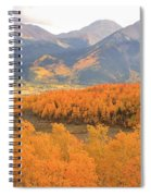 Fall Colors 3 Spiral Notebook