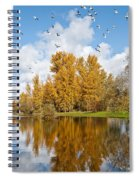 Fall Colors Clouds And Western Gulls Reflected In A Pond Spiral Notebook